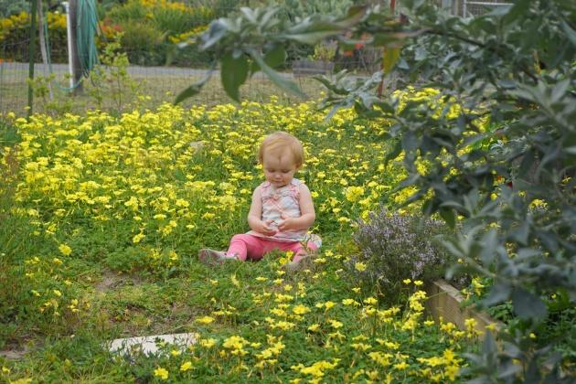 Childhood in the Garden